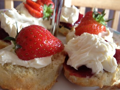Mini cream scones